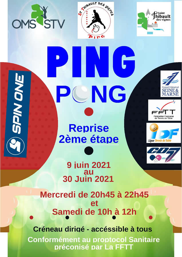 ST-Ping-Reprise-2